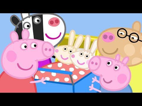 Peppa Pig - Rabbit & Zebra Family Tree Compilation (new! 2017)