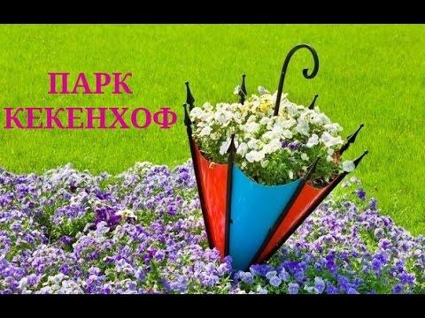 ПАРК КЁКЕНХОФ. Королевский сад цветов!