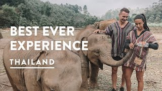 ELEPHANT SANCTUARY 2018 🐘 CHIANG MAI ELEPHANT JUNGLE SANCTUARY CAMP | Travel Vlog 119