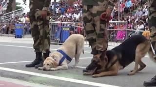 Wagah Attari Border Parade