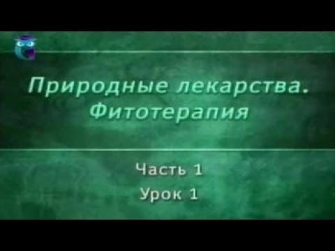 Фитотерапия. Урок 1.1. Основные принципы фитотерапии. Развитие фитотерапии в России