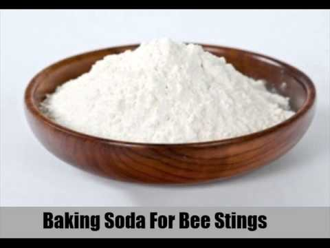 Video 8 Effective Home Remedies For Bee Stings In Children