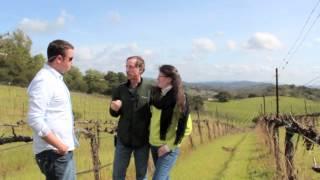 Expedia Road Trip: California Wine Country