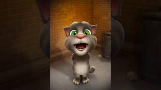 Derni ga Tomi(Tom the talking cat)