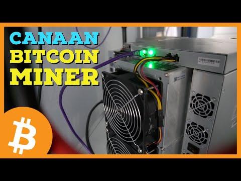 Btc trader online atsiliepimai