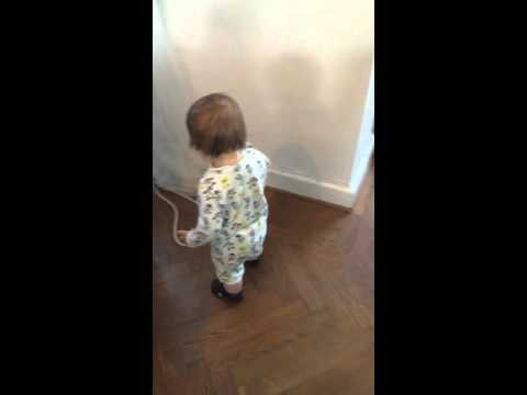 Baby Yelling At Dog
