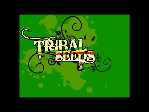 Jah Stone - Tribal Seeds