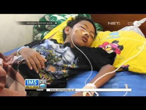 Video Kejadian luar biasa penyakit demam berdarah mewabah di Kabupaten Jombang - IMS