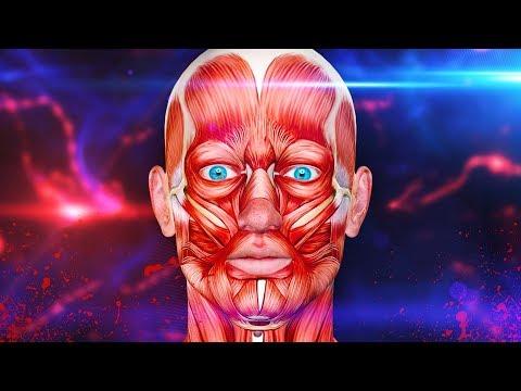 ชนิดของเวิร์มในมนุษย์ในภาพ