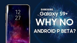 Why No Android P Beta For Samsung Galaxy S9 Owners?