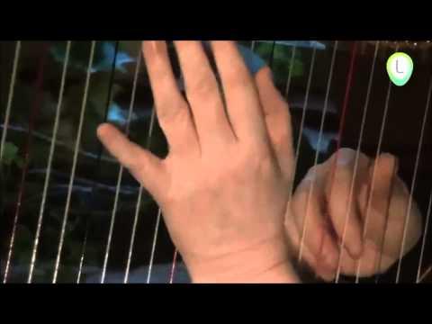 Vrouwenkoor De Paradijsvogels bezingt het kerstverhaal met begeleiding van harpiste