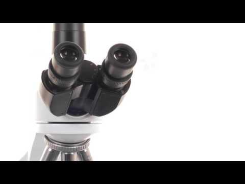 Euromex iScope EPL helderveld-microscoop