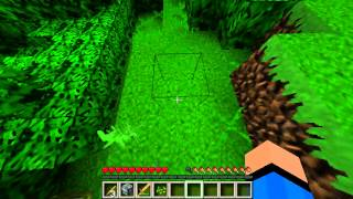 Lets Play Minicraft Yolo