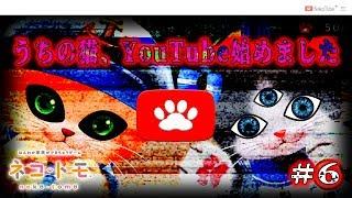 【Switch】ネコトモがYouTuberになってクソ動画作ってたwww#6【ネコ・トモ】