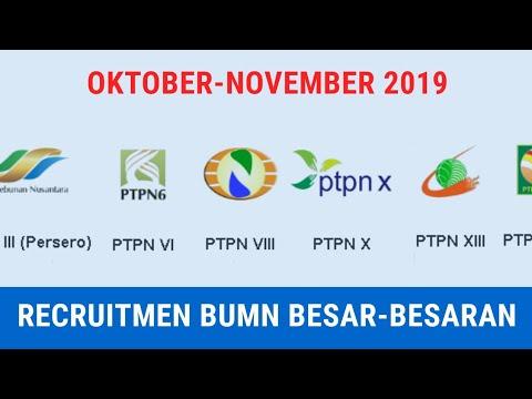 Recruitment BUMN Besar-besaran | Info Lowongan Pekerjaan Oktober-November 2019