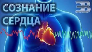 Разум и сознание сердца Научные факты