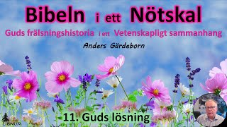Thumbnail for video: Bibeln i ett Nötskal Del 11: Guds lösning