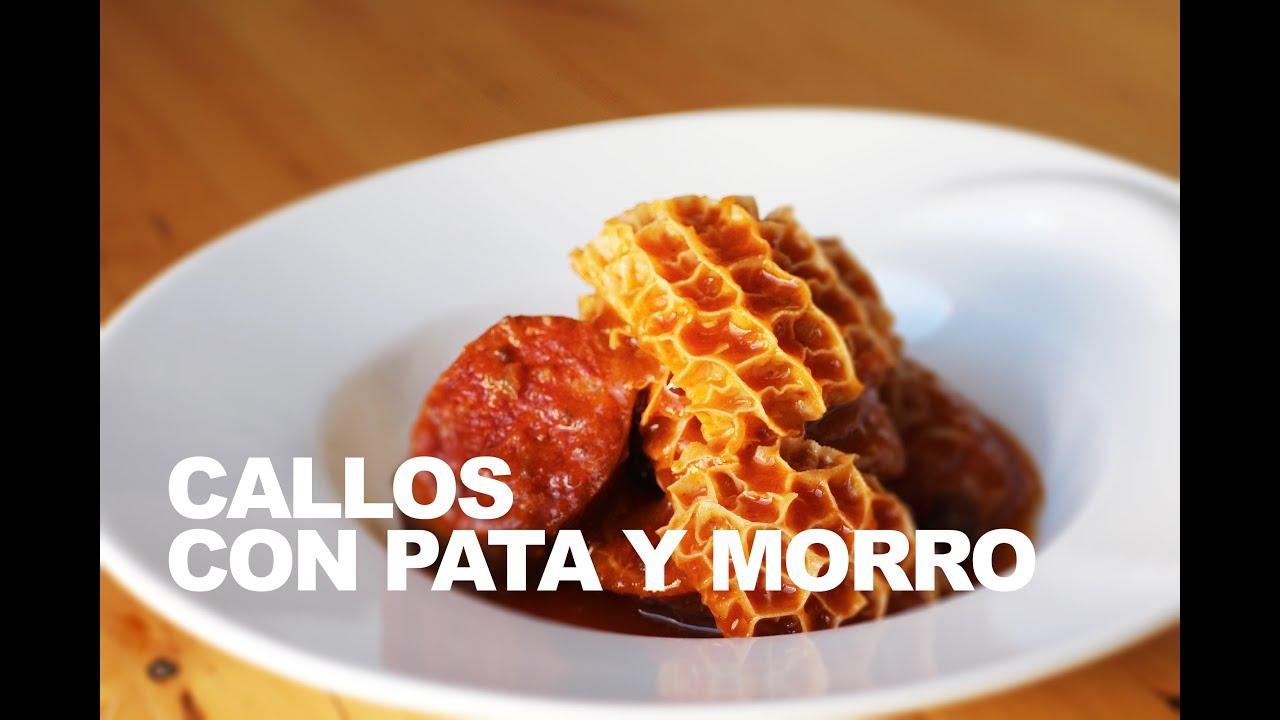 CALLOS CON PATA Y MORRO
