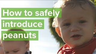 Safely introducing babies to peanuts (and other known allergens)