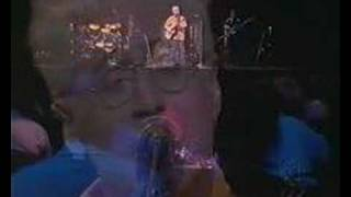 Bruce cockburn Live --- Wondering Where The Lions Are