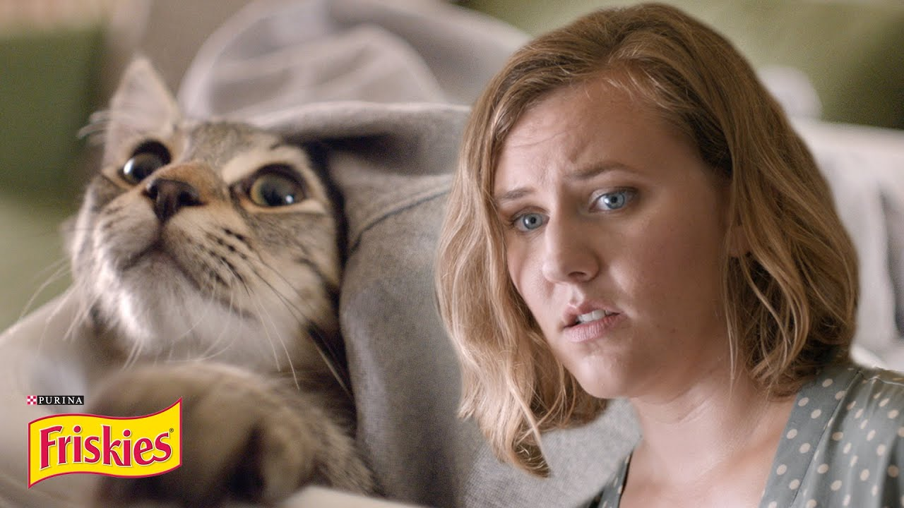 Life With A Cat // Presented By BuzzFeed & Friskies thumbnail