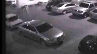 В Волгограде мужик поджигает автомобили