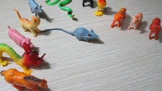 Đồ chơi trẻ em - Những con vật đáng yêu (Children toy - These adorable animals)