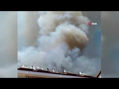 Antalya'nın ciğeri yanıyor!