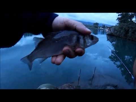 Per pescare di baleno