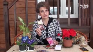 Смотреть онлайн Что нужно сеять в марте для огорода