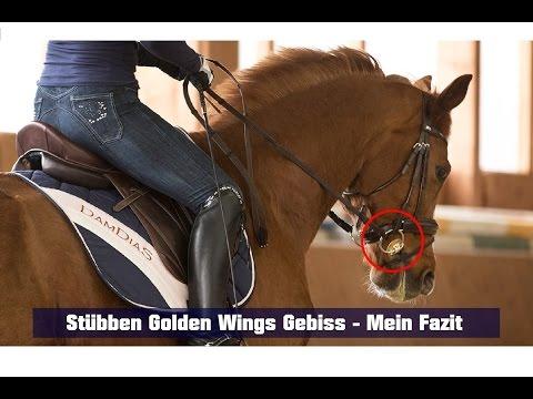 Stübben Golden Wings Gebiss - Mein Fazit nach 3 Monaten