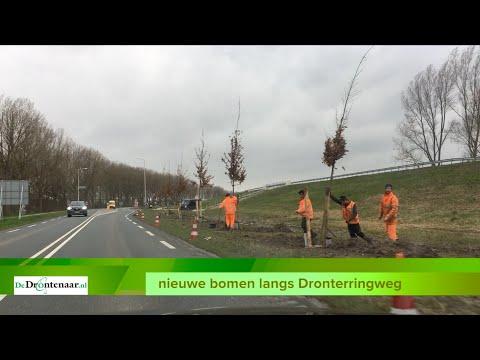 VIDEO | Provincie Flevoland is begonnen met planten van 348 eiken langs de Dronterringweg
