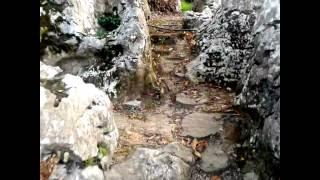 Video del alojamiento Posada Paraíso Iris