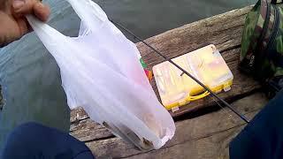 Спорт рыбалка отдых в тимашевске