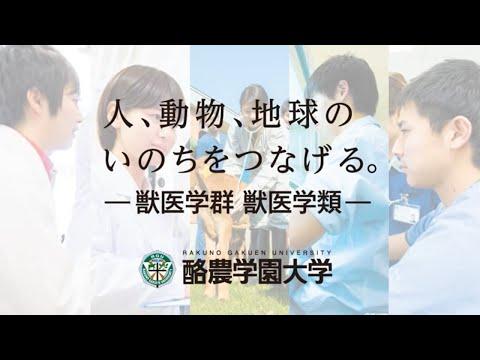 獣医学科創立50周年(日本語)