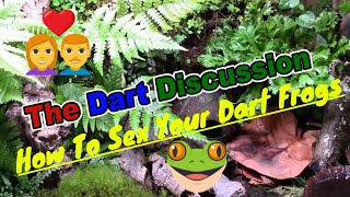 The Dart Discussion Episode 5 How To Sex Your Dart Frogs