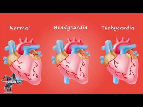 Il monitoraggio ambulatoriale della pressione arteriosa nei bambini
