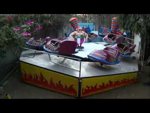 Amusement Park Equipment -Dancing Fish
