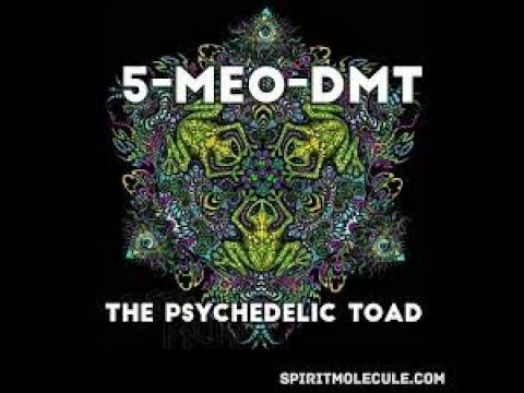 DMT-first experience (BUFO 5 MEO-DMT) PART ONE - смотреть онлайн на