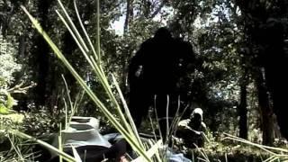 S.T.A.L.K.E.R. (Сталкер) / Чернобыль, STALKER: Monolith's Whisper (ENG FULL SUB)