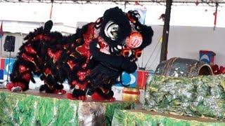 preview picture of video 'Lion Dance Video 2013 吉隆坡治仁南北龙狮团 傳統舞獅比賽'