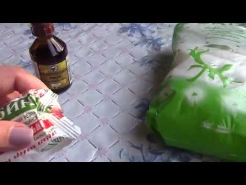 Диня семена в лечението на простатит