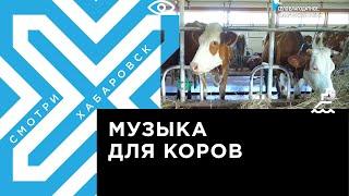 Гектарщики Хабаровского района, часть 2