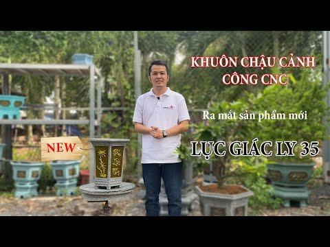 Mới Nhất - Khuôn Lục Giác Ly 35 Thuần Việt