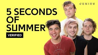 "5 Seconds Of Summer ""Valentine"" Official Lyrics & Meaning 
