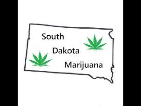 South Dakota Cannabis Activists Turn in Signatures for MMJ and Adult Use Ballot Questions