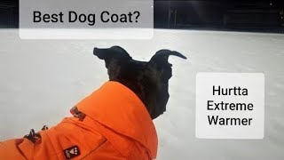 Best Winter Dog Coat: Hurtta Extreme Warmer Review