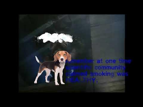 Real Dogman Photo? - смотреть онлайн на Hah Life