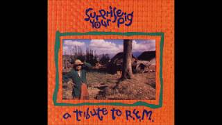 Vic Chesnutt - It's the End of the World As We Know It (and I Feel Fine)