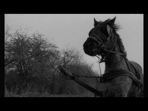 » Streaming Online The Turin Horse